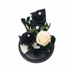 3 Trandafiri Criogenati Mov Alb in cupola de sticla Queen Flowers Flori si Aranjamente florale