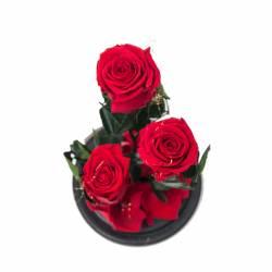 3 Trandafiri Criogenati Rosii in cupola cu buton de sticla Queen Flowers Flori si Aranjamente florale