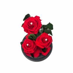 3 Trandafiri Criogenati Rosii in cupola de sticla Queen Flowers Flori si Aranjamente florale
