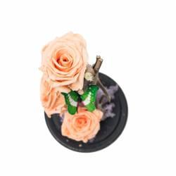3 Trandafiri Criogenati Roz pal in cupola de sticla Queen Flowers Flori si Aranjamente florale