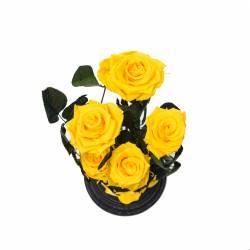 5 Trandafiri Criogenati Galbeni in cupola cu buton de sticla Queen Flowers Flori si Aranjamente florale