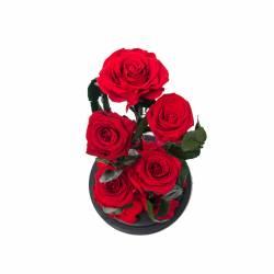 5 Trandafiri Criogenati Rosii in cupola cu buton de sticla Queen Flowers Flori si Aranjamente florale