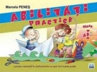 Abilitati practice cls 1 - Marcela Penes