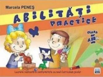 Abilitati practice cls 2 - Marcela Penes