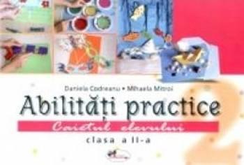 Abilitati practice cls 2 caiet+12 planse - Daniela Codreanu Mihaela Mitroi