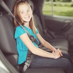 Adaptor Centura Auto Sure Fit Diono Accesorii transport
