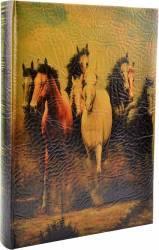 Album foto Arte Horse 300 Fotografii 10x15