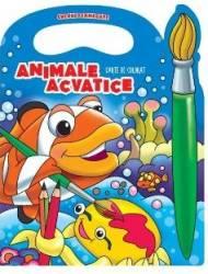 Animale acvatice - Carte de colorat culori fermecate