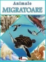 Animale migratoare Carti