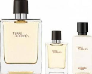 Apa de Toaleta Terre 100ml + 5ml + Shower Gel 40ml by Hermes Barbati 100ml+5ml+40ml Parfumuri de barbati