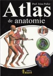 Atlas De Anatomie  Irina Paller