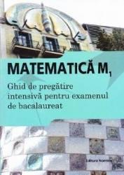 Bac 2015 Matematica M1 Ghid de pregatire intensiva pentru Bac