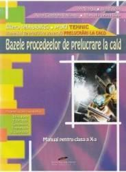 Bazele procedeelor de prelucrare la cald - Clasa a 10-a - Manual - Ion Neagu Ioana Aries title=Bazele procedeelor de prelucrare la cald - Clasa a 10-a - Manual - Ion Neagu Ioana Aries