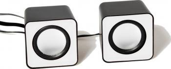Boxe Media-Tech FADO