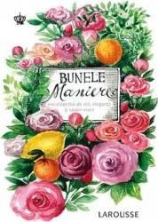 Bunele maniere Larousse - Sabine Denuelle