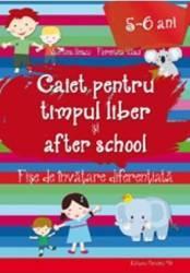Caiet pentru timpul liber si after school 5-6 ani - Valentina Iliescu Florentina Vasui