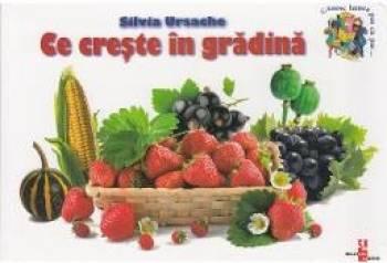 Ce creste in gradina - Silvia Ursache