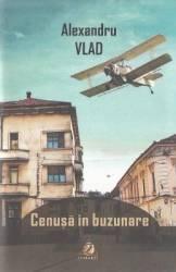 Cenusa in buzunare - Alexandru Vlad