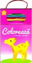 Coloreaza si invata culorile 2