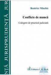 Conflicte De Munca - Beatrice Mischie