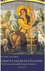 Crucea lucreaza in lume. Omilii pentru perioadele liturgice de peste an - John Behr