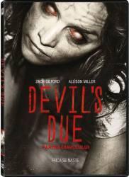 Devil s Due BluRay 2014