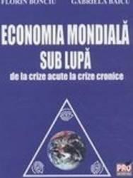 Economia Mondiala Sub Lupa - Florin Bonciu Gabriela Baicu Carti