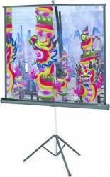 Ecran De Proiectie cu Trepied Projecta 162 x 213 cm Ecrane Proiectie