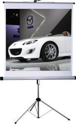 Ecran de proiectie Medium Tripod CombiFlex Pro 200 x 200 cm Type D Ecrane Proiectie