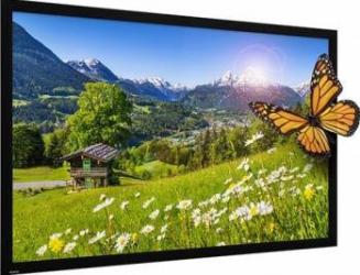 Ecran de proiectie Projecta 154 x 236 HomeScreen Deluxe HD Progressive 0.6 Ecrane Proiectie