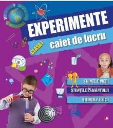 Experimente clasa 1 caiet de lucru