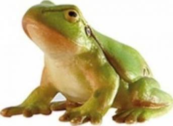 Figurina Bullyland Tree Frog