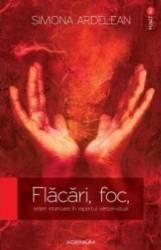 Flacari Foc Arderi Interioare In Raportul Verbal-Vizual - Simona Ardelean