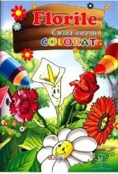 Florile - Cartea mea de colorat