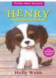 Henry catelusul de pe plaja - Holly Webb