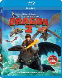 How to Train Your Dragon 2 BluRay 2014 Filme BluRay