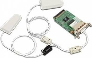 IEEE802.11 Interface Unit Ricoh Type P1 Accesorii imprimante