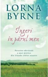 Ingeri in parul meu - Lorna Byrne