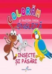 Insecte si pasari - Coloram si invatam limba engleza
