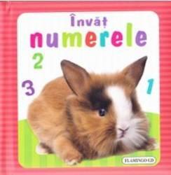 Invat numerele