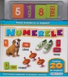 Invata jucandu-te cu magneti - Numerele