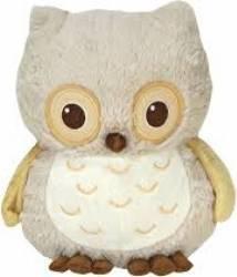 Jucarie muzicala Sunshine Owl Jucarii muzicale