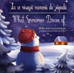 La ce viseaza oamenii de zapada. What Snowmen Dream of - Andreea Demirgian