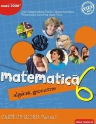 Matematica - Clasa 6 Partea I - Caiet Consolidare Ed.2018 - Sorin Peligrad Adrian Turcanu