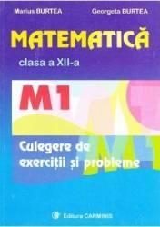 Matematica clasa 12 M1 culegere de exercitii si probleme - Marius Burtea Georgeta Burtea