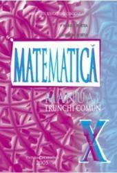 Matematica cls 10 Tc - Marius Burtea Georgeta Burtea