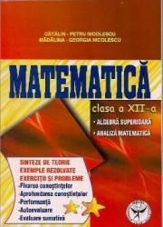 Matematica Cls 12 - Sinteze De Teorie Exemple Rezolvate. Exercitii Si Probleme - Catalin-Petru Nico