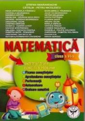Matematica Cls 6 - Sinteze De Teorie. Exercitii Si Probleme - Stefan Samarandache