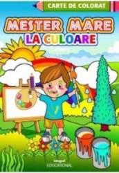 Mester mare la culoare - Carte de colorat Carti