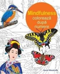 Mindfulness Coloreaza dupa numere